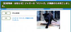 スクリーンショット 2014-03-03 20.20.54